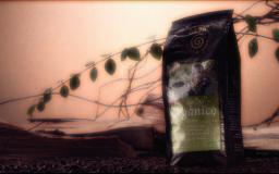 Organico-Kaffee